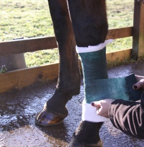 Bandaging - Always apply a bandage using even pressure and a 50% overlap