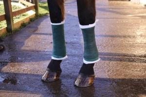 Bandaging - Always bandage both legs to provide support