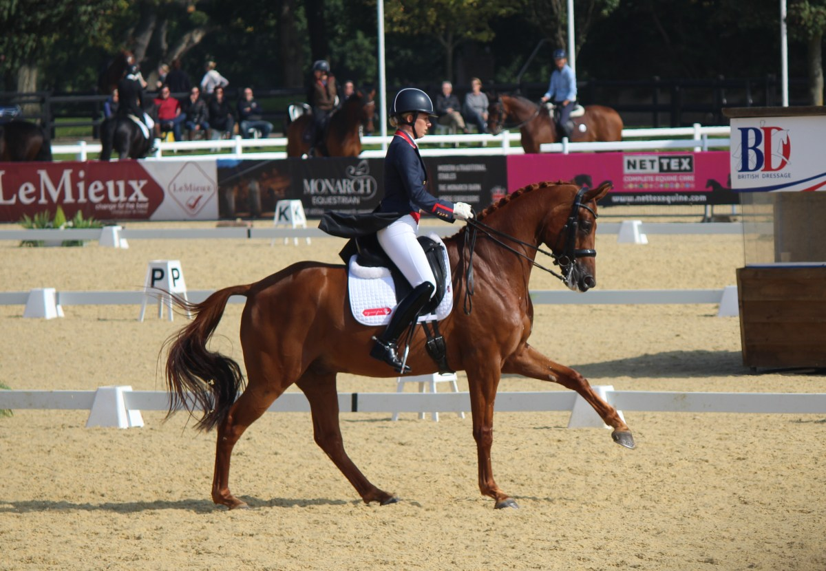 Dressage - How to Ride a Flying Change