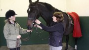 Fitting a Bridle Correctly