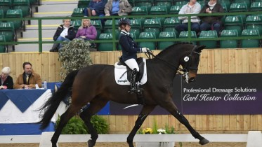 Top tips on how to remember a dressage test