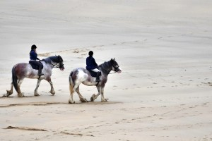 Five reasons why taking up horse riding will improve your health