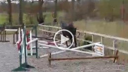 Video Series - Loose Jumping with Ellen Terray Part 3