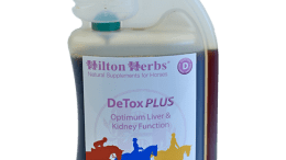 DETOX PLUS from Hilton Herbs