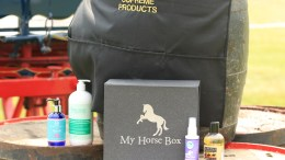 My Horse Box to Start Raising Money for Equine Charity