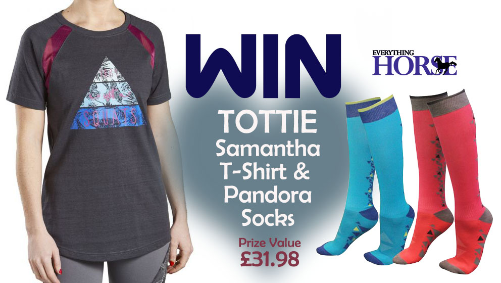 WIN with Tottie and Everything Horse