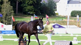 Recognition of scoring error for Blair Castle Equi-Trek International CIC3*