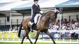 Sir Mark Todd (NZL) and Leonidas II take the lead after dressage at the Land Rover Burghley Horse Trials, sixth and final leg of the FEI Classics™ series. (FEI/Libby Law)