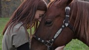 Horse Strangles Help Scientist with the Human Sore Throat