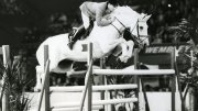 HOYS to celebrate 70 Years in style