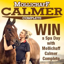 Mollichaff win