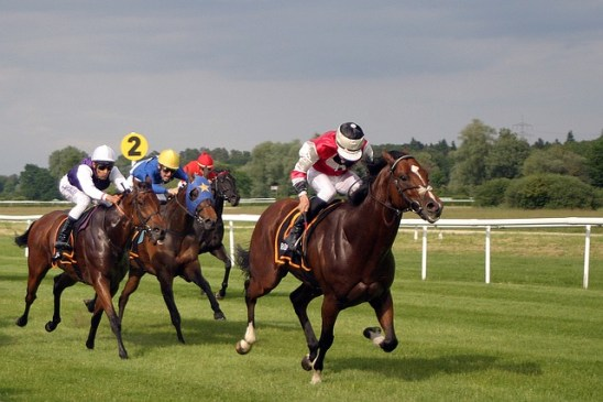 5 most profitable thoroughbred racehorses of all-time