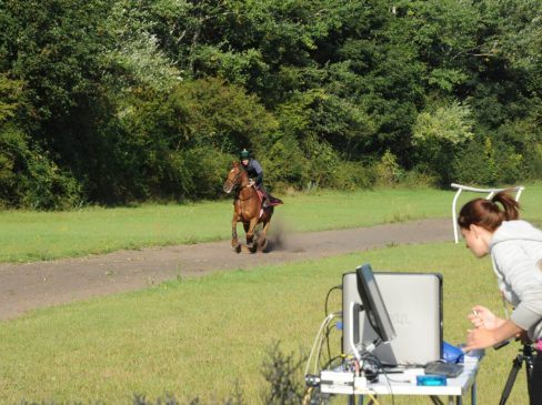 How is the fitness of a racehorse improved before a big race?