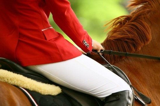 Germany's Jos Verlooy and Jacobien Dwerse Hagen rode to win The Bunn Leisure Salver at the world-renowned Hickstead Showground, in West Sussex this morning.