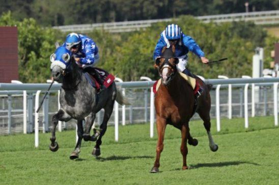 The Qatar International Stakes Group 1PA