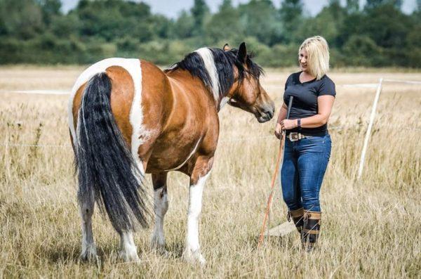 Natural Horsemanship - The Art of Doing Nothing
