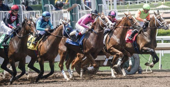 British horse racing 2020