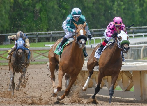 Kentucky Derby: Baffert 'Substitute' Set to Upset the Odds - Image for illustration only
