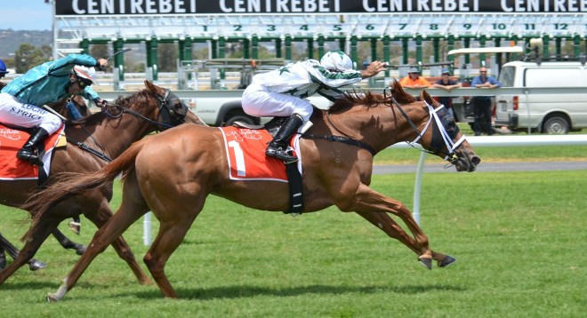 Horse Racing - What to Look for When Picking a Winning Horse?