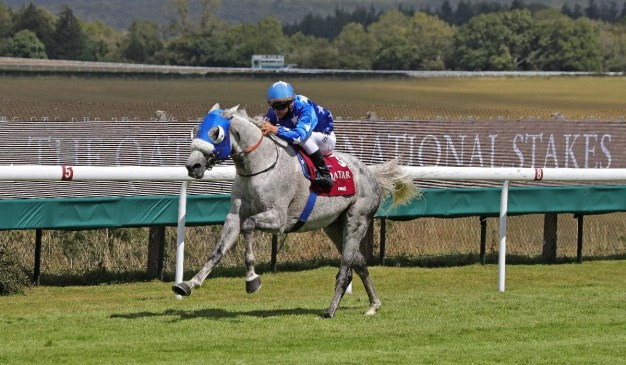 Ebraz (GB) and Maxime Guyon win the 2020 Qatar International Stakes (Gr1PA)(C) Debbie Burt