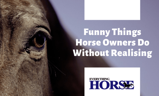 Funny things horse owners do