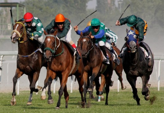 Horse Racing In Yorkshire - It's a Tradition!