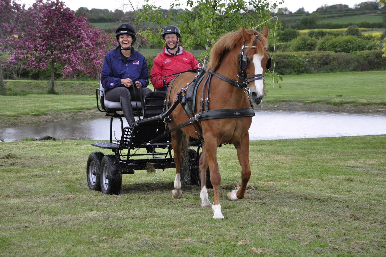 Try Carriage Driving with the Bennington Team