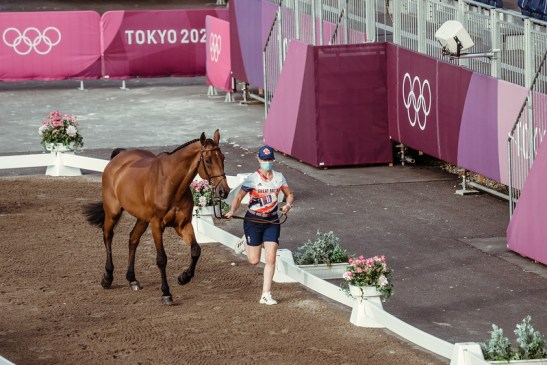 Olympics Games - FEI 2nd horse inspection Jumping 342 - GBR - Smith Holly ride Denver Photo Copyright © FEI/Christophe Taniére