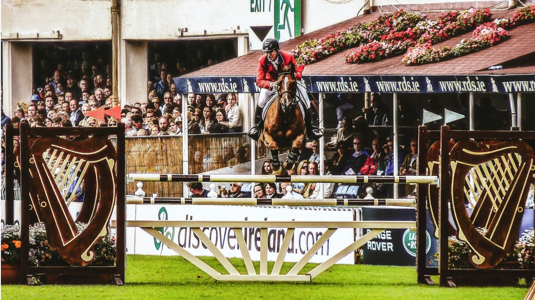 Kinship of equestrian sport and racing