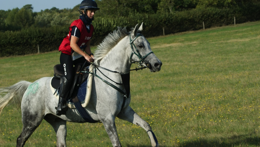 FEI Well Vale International Ride news piece image Nikki Malcolm and Osso Spiralling Wind competing at Lavenham Ride last year. Photo credit: Kerry Dawson