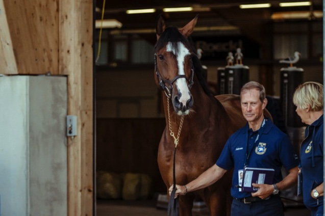 FEI Jumping European Championship 2021 - Sweden's Rolf-Goran Bengtsson and Ermindo W waiting to take their turn at today's horse inspection at the FEI Jumping European Championships 2021 in Riesenbeck, Germany. (FEI/Christoph Taniere)