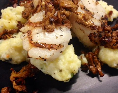 gnocchi grilled scallops and chantrells pic
