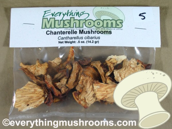 Chanterelle Mushrooms, Cantharellus cibarius - .5oz pack