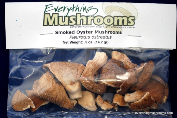 Oyster Mushrooms, Pleurotus Ostreatus, 0.5 oz pack