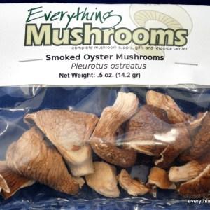 Oyster Mushrooms, Pleurotus Ostreatus, 0.5 oz pack