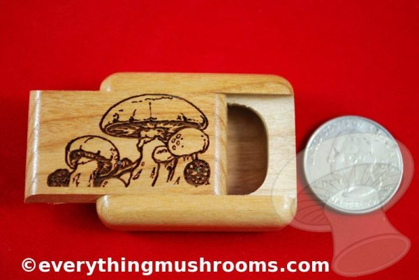 Mushroom Secret Box - Small, by Heartwood Creations