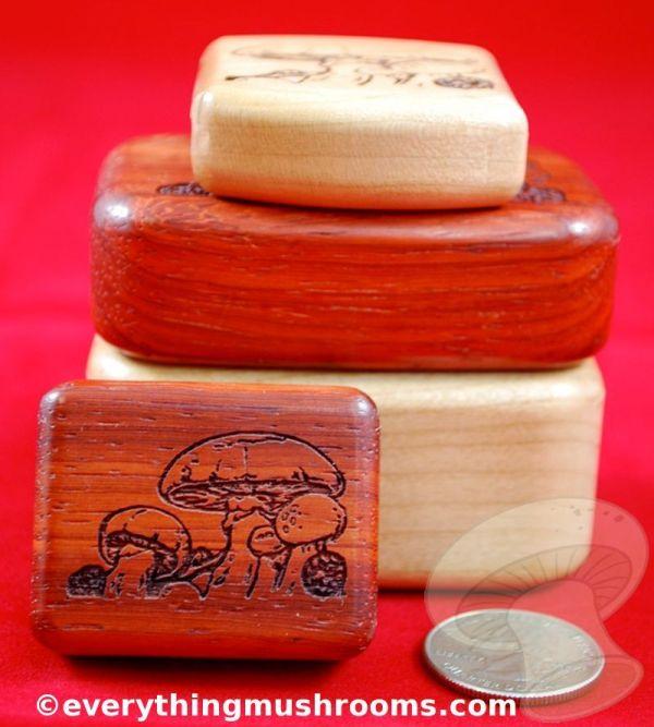 Mushroom Secret Box - Large, by Heartwood Creations