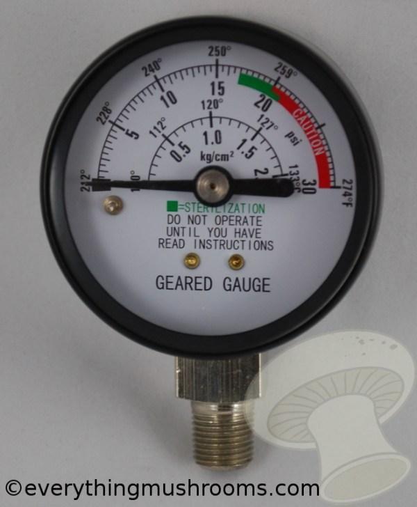 Geared Steam Gauge (Sterilizers Only) (Z000128)
