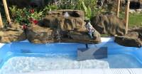 Landscape Waterfall Gallery | Backyard & Pool Rock Waterfalls