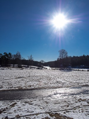 Stockholm Nacka Nature Reserve Mar 2017-23