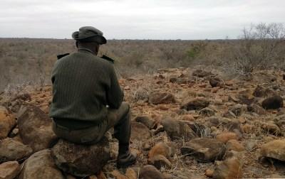 Ranger Central Kruger