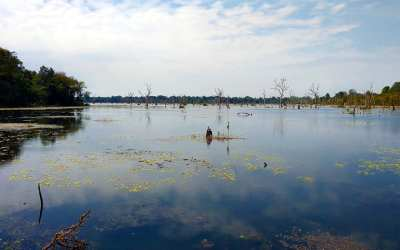 Baray in Angkor