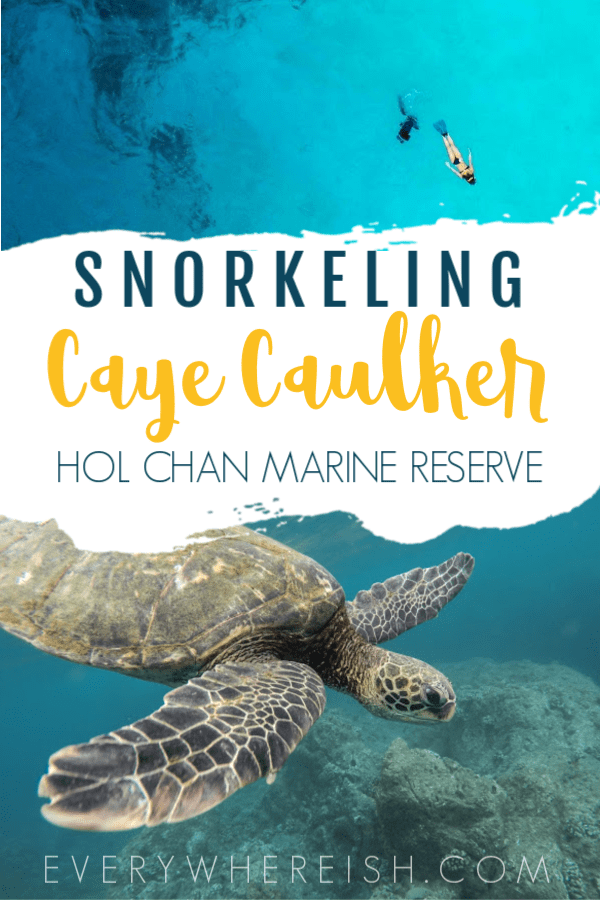 Caye Caulker Snorkeling Tour: Snorkeling Shark Ray Alley with Ragamuffin Tours
