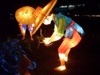 Lantern Fest., AKLNZ