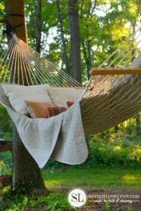 photo of hammock in a garden