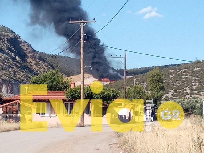 Χαλκίδα: Ανεξέλεγκτη πυρκαγιά στη Χαραυγή
