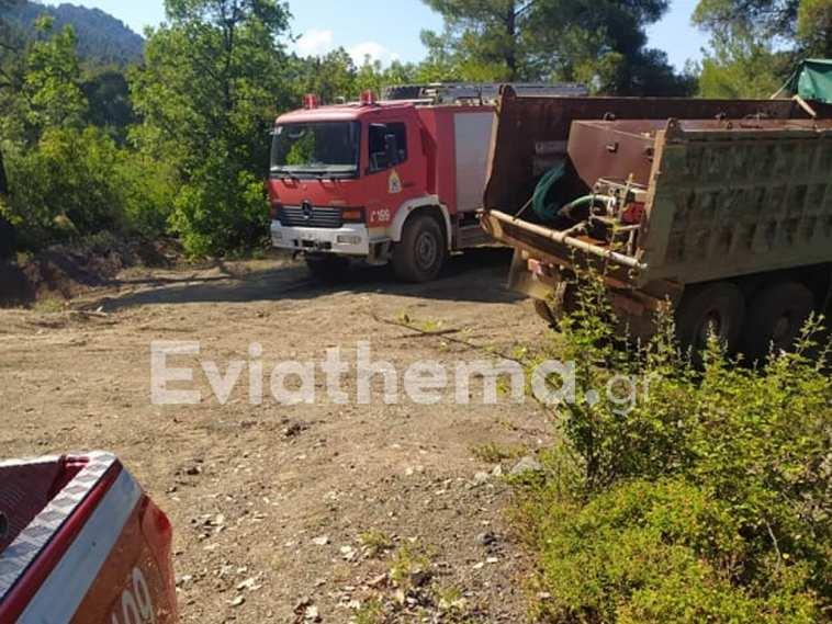 Βόρεια Εύβοια: Πυρκαγιές ξέσπασαν σε Προκόπι