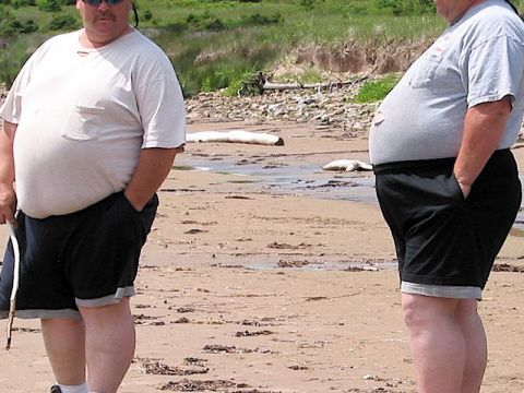 two obese men