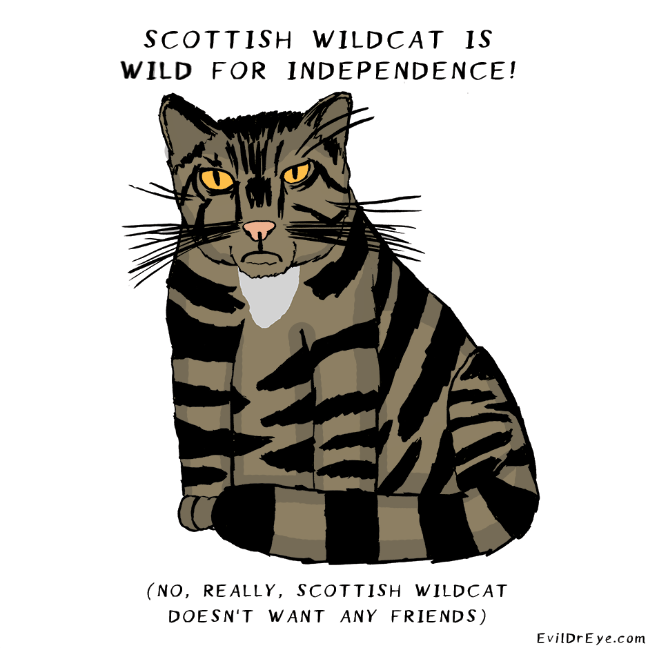 Wild for independence!