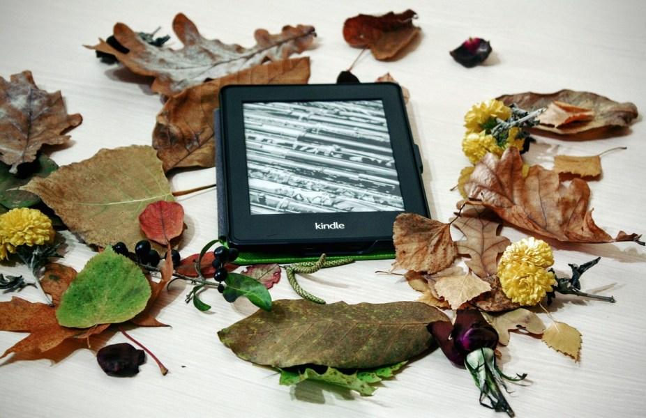 Kindle, mon meilleur ami de voyage